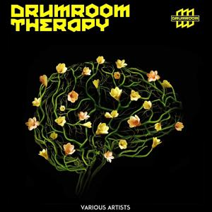 Drumroom Therapy