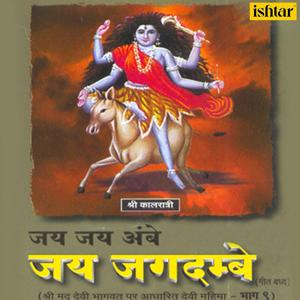 Jai Jai Ambe Jai Jagdambe, Vol. 9