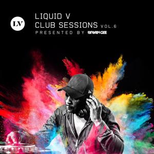 Liquid V Club Sessions, Vol. 6