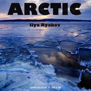 Arctic - Single
