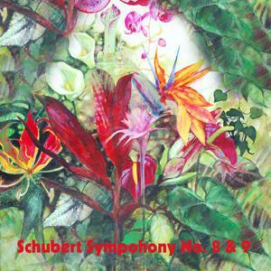 Schubert Sympohony No. 8 & 9