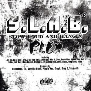 Plex, Vol. 4.5 (S.L.A.B.ed)