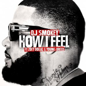 How I Feel (feat. Zoey Dollaz & Young Breed) - Single