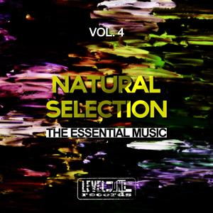 Natural Selection, Vol. 4 (The Essential Music)