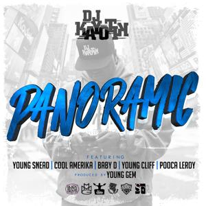Panoramic (feat. Young Snead, Pooca Leroy, Baby D, Young Cliff, Cool Amerika) - Single