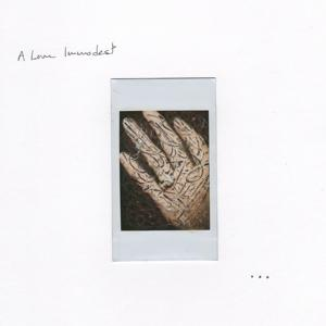 A Love Immodest
