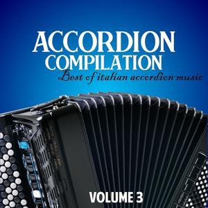 Accordion compilation, Vol. 3