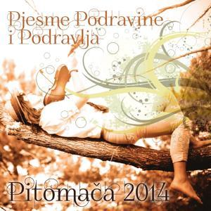 Pjesme Podravine I Podravlja - Pitomača 2014