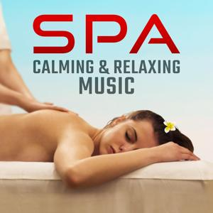 Spa Calming & Relaxing Music: Natural Sounds, Deep Sleep, Meditation, Prayer, Zen Garden, Chackra Balancing