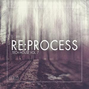 Re:Process - Tech House Vol. 7