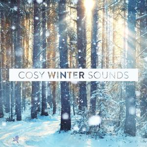 Cosy Winter Sounds, Vol. 4