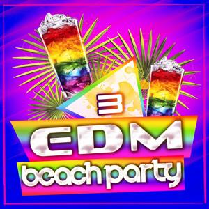 EDM Beach Party, Vol. 3