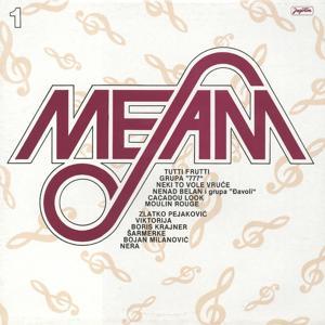 Mesam '89