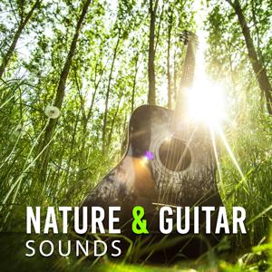Nature & Guitar Sounds – Beautiful Sounds to Relax, Rest a Bit, Time to Rest, Inner Journey