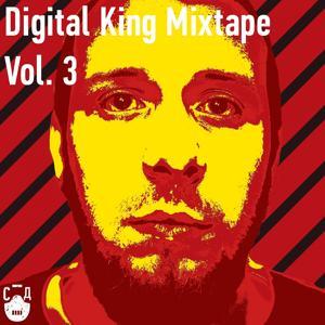 Digital King, Vol. 3