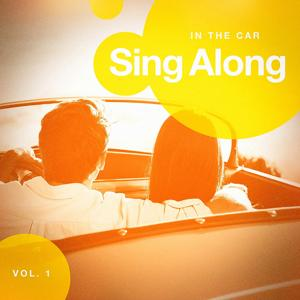 Sing Along in the Car, Vol. 2