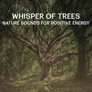 Whisper of Trees – Nature Sounds for Positive Energy, Get Relax and Calm Down with Meditation Music