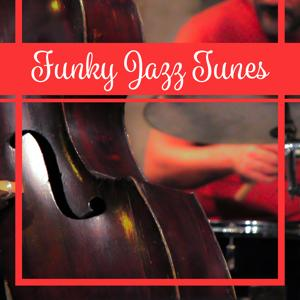 Funky Jazz Tunes: Instrumental Jazz Music, Ambient Jazz Relaxation, Saxophone Evening Melody, Sexy Cocktail Party