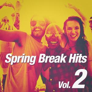 Spring Break Hits, Vol. 2