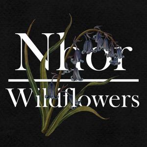 Wildflowers: Spring