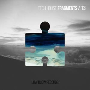 Tech House Fragments 13