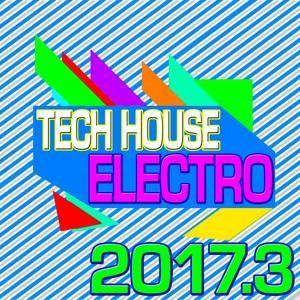 Tech House Electro 2017.3