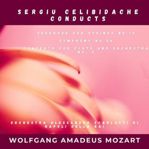 Wolfgang Amadeus Mozart: Serenade for Strings No.13, Symphony No.36, Concerto for Flute and Orchestra No. 2