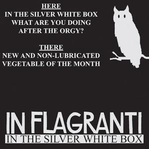 In The Silver White Box EP
