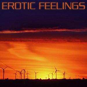 Private Chillout Lounge (Erotic Feelings)