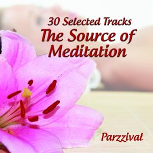 30 Selected Tracks : The Source of Meditation
