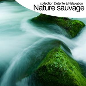 Nature sauvage - Sounds of Nature (Collection détente et relaxation)